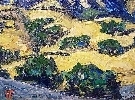 Allen Forrest - Petaluma Hills II