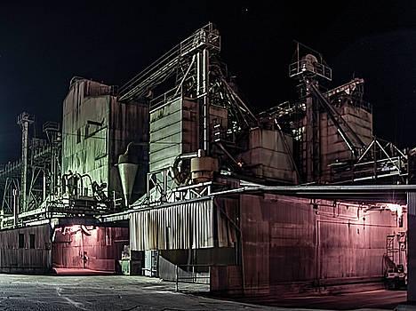 Petaluma Mill by Bill Gallagher