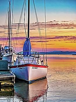 Petaluma River Sunrise by Bill Gallagher