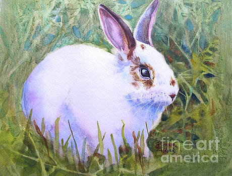 Peter Rabbit in the Grass by Bonnie Rinier