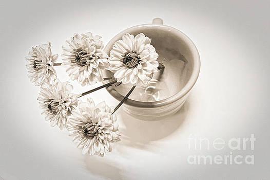 Onedayoneimage Photography - Petit Bouquet