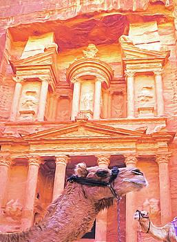 Dennis Cox - Petra Camels