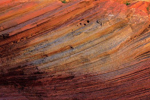 Ralph Nordstrom - Petrified Dunes 1 2015