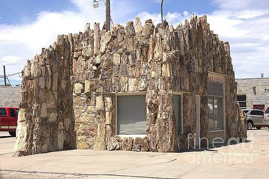 Petrified Wood Building by Carole Martinez