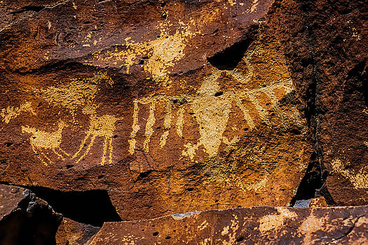 Petroglyph Bird And Animals by Garry Gay