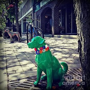 Frank J Casella - Pets on Parade