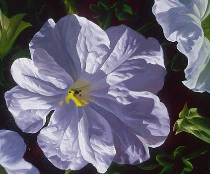 Petunia One by Michael Gerry