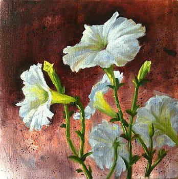 Petunias Delight by Ningning Li
