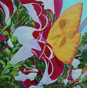 Petunias by Gail Kent