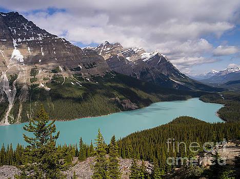 Peyto Lake 2 by Tracy Knauer