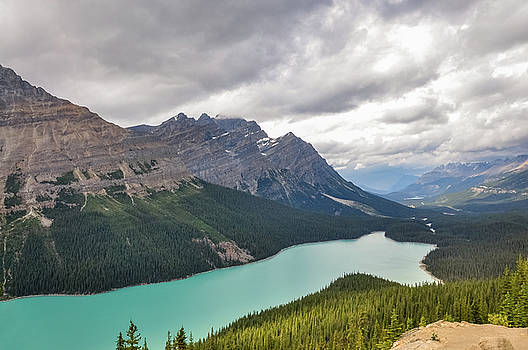 Peyto Lake - Banff National Park, Canada by Daniela Constantinescu