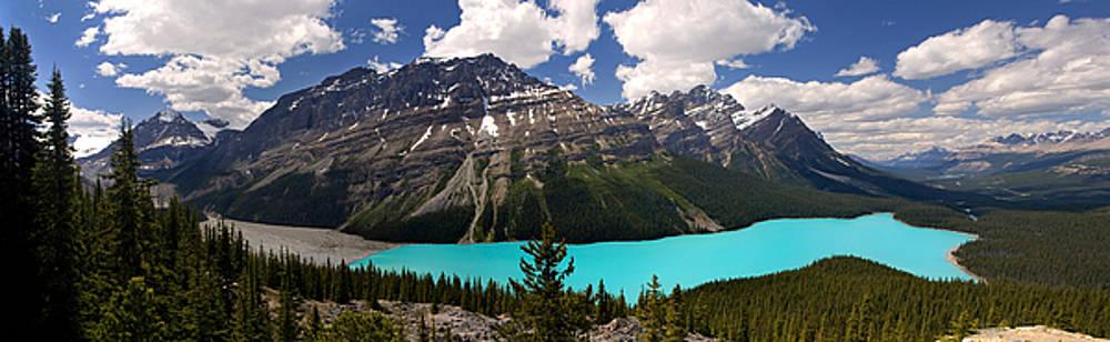 Peyto Lake in Summer by Matt Tilghman