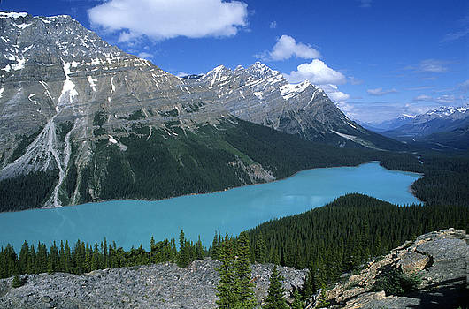 Sandra Bronstein - Peyto Lake Overlook