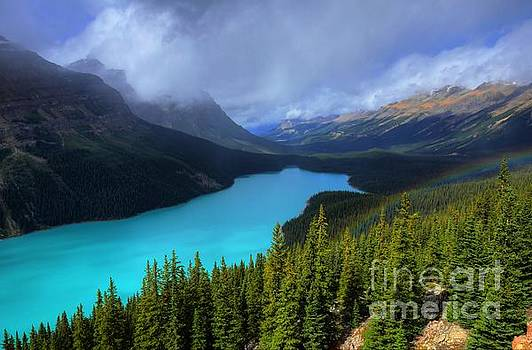 Wayne Moran - Peyto Lake Rainbow Below Banff National Park