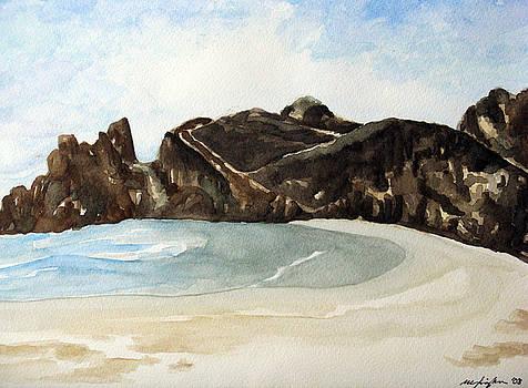 Pfeiffer State Beach  by Mic DBernardo
