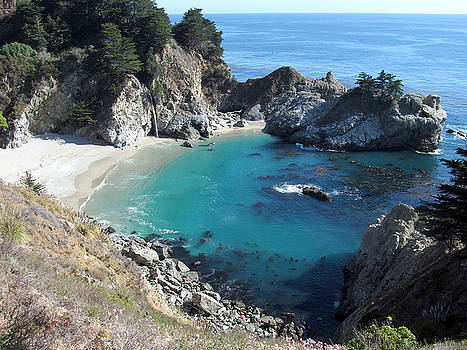 Pfeiffer State Park Paradise by Steven A Simpson