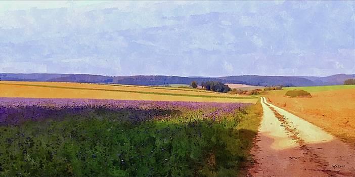 Phacelia field by Wolfgang Schweizer