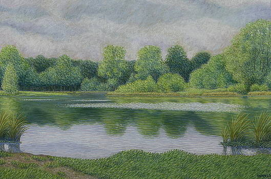 Phalempin pond in summer, effect of wind on the water  by Raphael Seygnovert