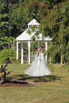 Phantom Bride by Rosalie Scanlon