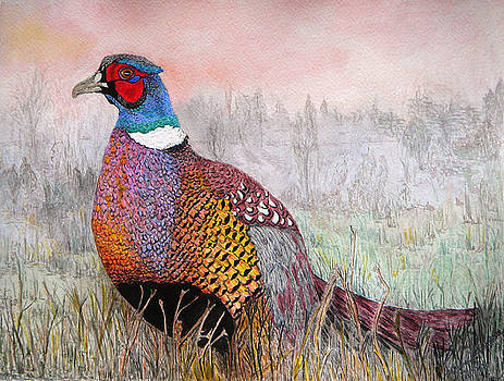 Pheasant Dawn by Yvonne Johnstone