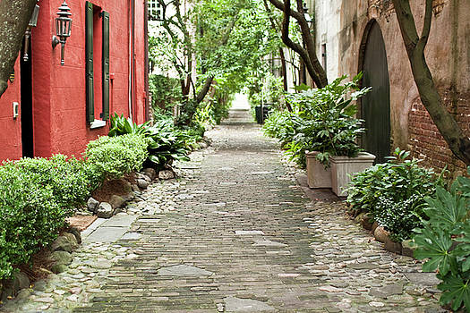 Philadelphia Alley Charleston Pathway by Dustin K Ryan