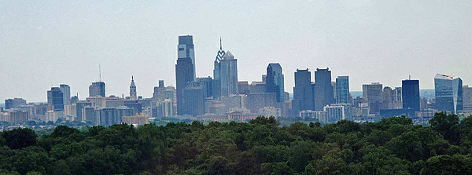 Ian  MacDonald - Philadelphia Green Skyline