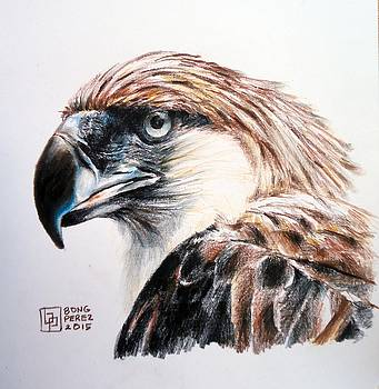 Philippine eagle by Bong Perez