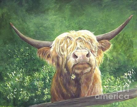 Phillip -A scottish Highland Bull by Elizabeth Ellis