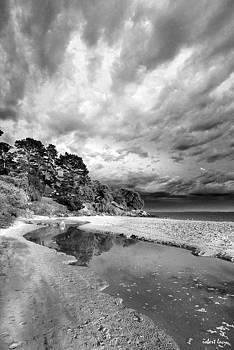 Robert Lacy - Phillip Island Dawn