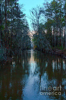Phinizy Ditch by Gregory Schultz