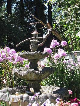 Phlox Garden by Judyann Matthews