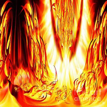 Phoenix Fire by Neil Finnemore