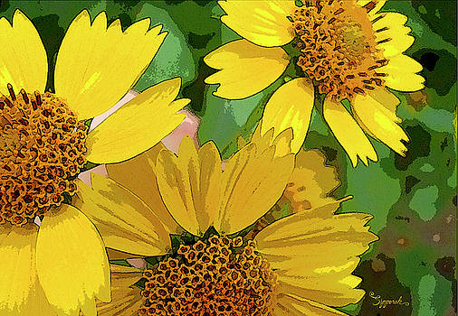 Yellow Wildflowers Photograph II by Sipporah Art and Illustration