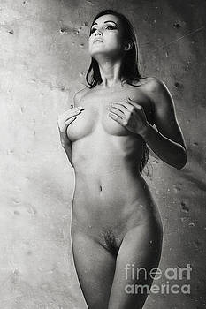 Photograph Beautiful Nude Woman vintage look #6304v by William Langeveld