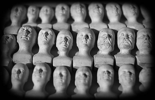 Phrenological Heads by David Harding