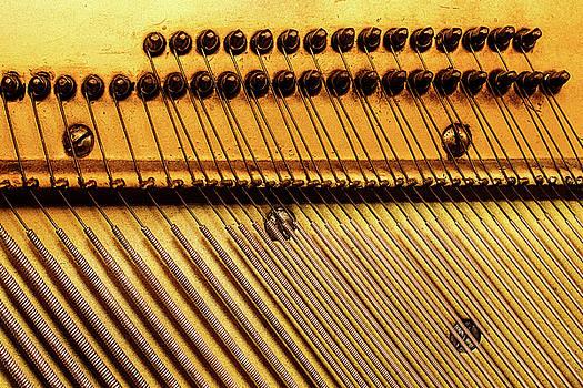 Piano 8 by Rebecca Cozart