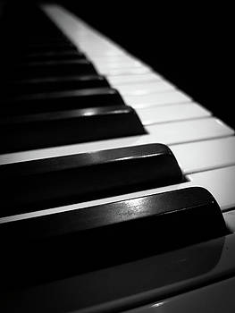 Piano Keys 1 by Jonathan Hansen