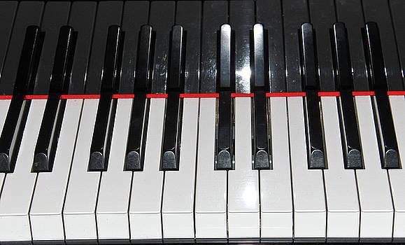 Piano Keys by Ruthanne McCann