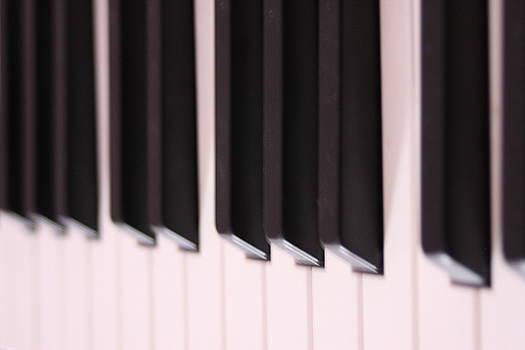 Piano Keys by Sheryl Chapman Photography