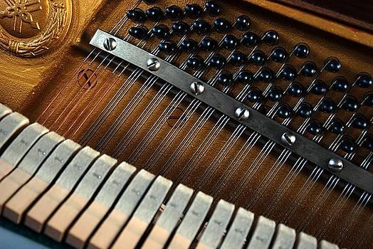 Piano by Kim Blumenstein