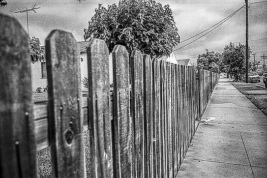 Picket Fence Along The Boulevard in Black and White by YoPedro