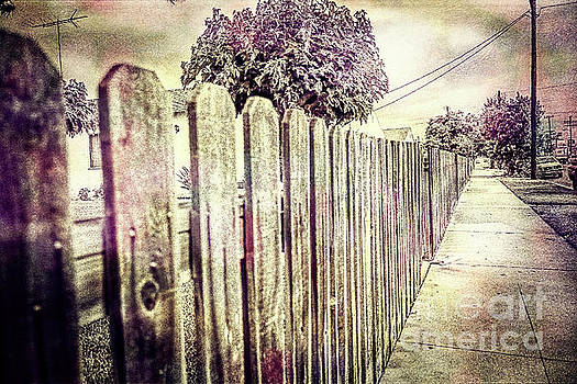 Picket Fence Along The Boulevard in Color Tones by YoPedro