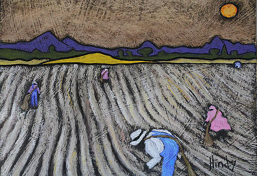 David Hinds - pickin cotton