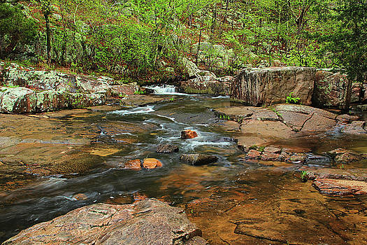 Pickle Creek In Springtime 4 by Greg Matchick