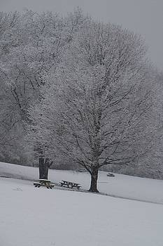 Picnic in winter  by Michael Senn