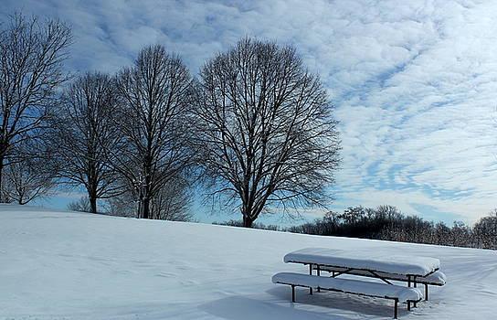 Rosanne Jordan - Picnic Memories in Winter