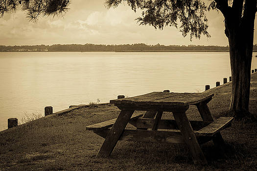 Picnic Table by Carolyn Ricks