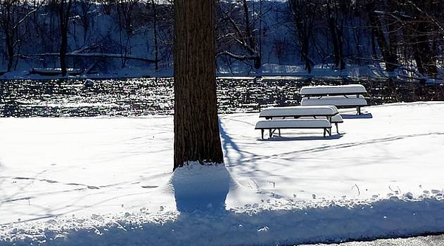 Picnic Tables and River by Susan Wyman