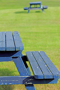 Picnic Tables by Brian Pflanz