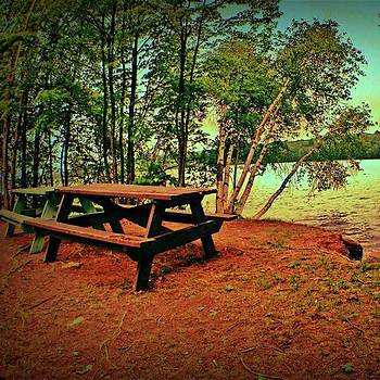 Picnic Tables In Woods by Amanda Richter